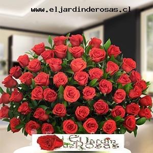 fino arreglo con rosas rojas codcjr
