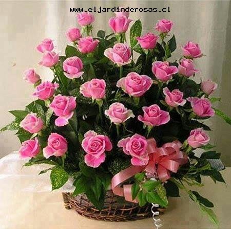 hermosa canasta con rosas malibu codcmb