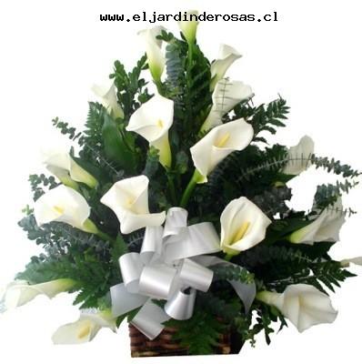 ELJARDINDEROSAS Florerias Flores santiago Chile Envio de rosas a